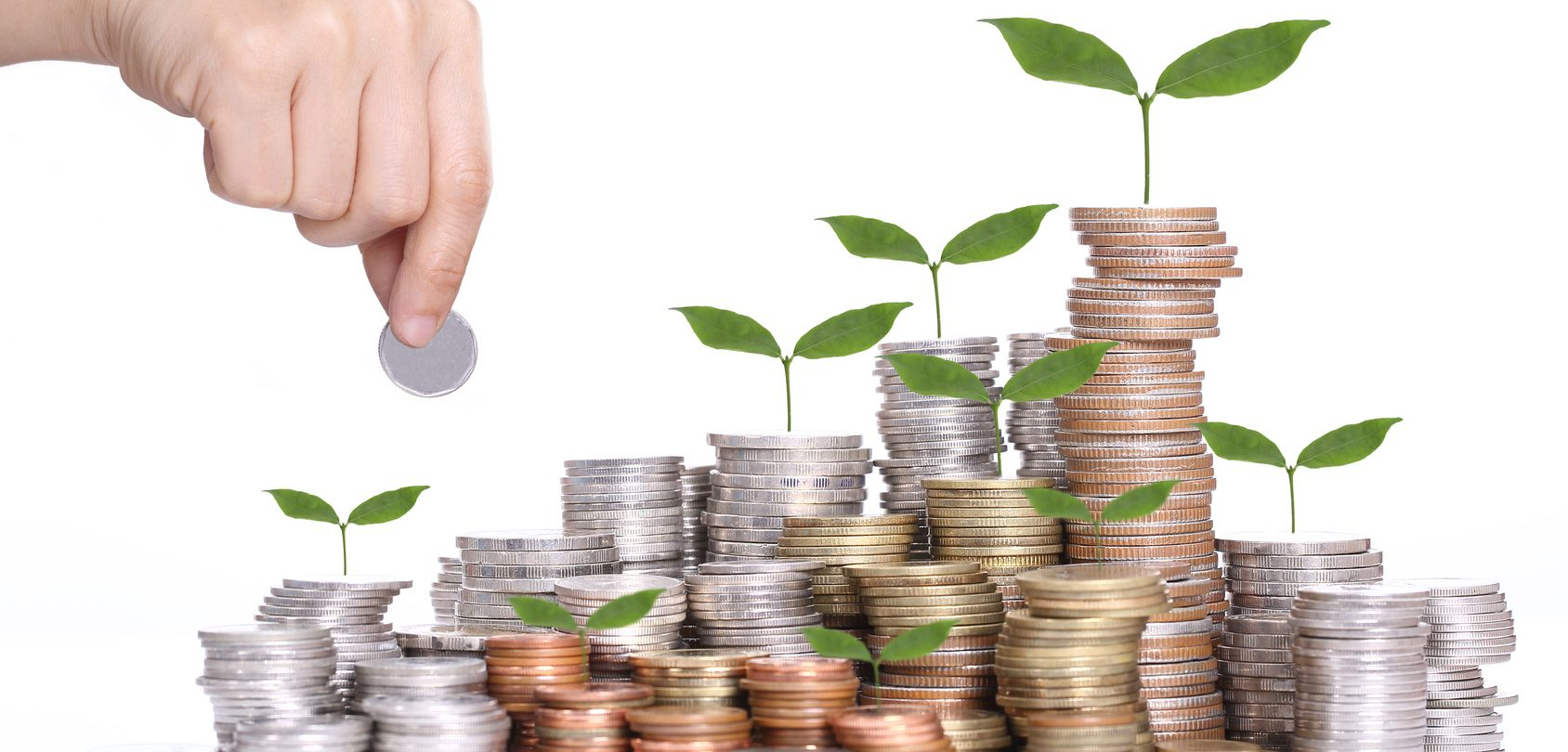 Finans, kredittkort og økonomi